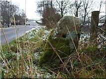 H4971 : Milestone, Deverney Road by Kenneth  Allen