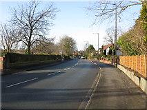 SJ7886 : Hale Road, looking west by Peter Whatley