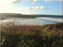 SM8513 : The Beach by Deborah Tilley