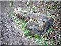 NY5558 : Log seats by Oliver Dixon