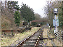 SO6302 : St Mary's Halt, Lydney by Stuart Wilding