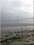 TA0225 : The Humber Foreshore at Hessle by David Wright
