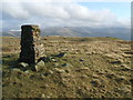 SD5999 : Trig Pillar ,Greyrigg Forest by David Brown
