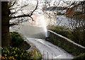 H9751 : A leak at the bridge  in Ballinteggart Road by William England