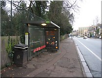 TL4557 : Bus Stop - Hills Road by Given Up