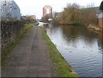 SJ8798 : Ashton Canal by Chris Wimbush