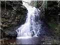 NY8485 : Hareshaw Linn by Andrew Curtis