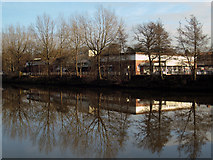 J3472 : The River Lagan at Annadale Embankment by Rossographer