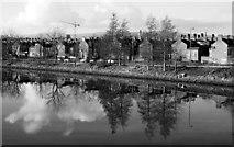 J3472 : The River Lagan at Stranmillis Embankment by Rossographer