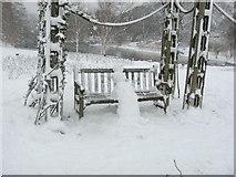 TQ2882 : Snowman in Queen Mary's Rose Garden by Sheila Madhvani