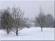 TQ3095 : Oakwood Park, London N14 by Christine Matthews