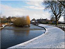 SJ9222 : River Sow, Victoria Park, Stafford. by Tim Marshall