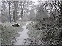 H4772 : Snowing, Cranny by Kenneth  Allen