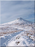 NZ5812 : Path across Roseberry Common by Stephen McCulloch