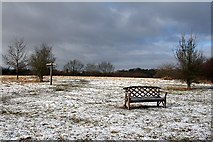 TQ1739 : Bench on open space above Capel by Hugh Craddock