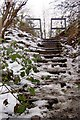 SE3904 : Steps up to the Dove Valley Trail by Steve  Fareham