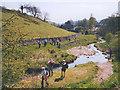 SE0263 : Walkers alongside Hebden Beck by Stephen Craven