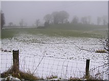 H4277 : Mountjoy Townland by Kenneth  Allen