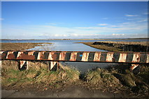 SD3444 : Inlet/Outlet on River Wyre by Bob Jenkins