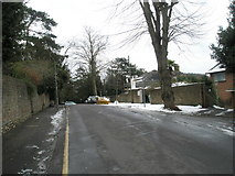 SU9948 : Mid-section of Guildown Road by Basher Eyre
