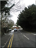 SU9948 : Snow nearly gone in Guildown Road by Basher Eyre