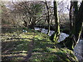 SM9736 : Water pipe over Afon Gwaun by ceridwen