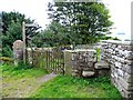 NY9913 : Gates and stile by Andrew Tatlow