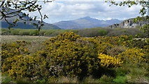 SH5838 : View Across Traeth Mawr, Towards Snowdon by Peter Trimming