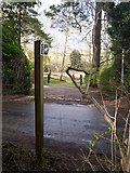TQ6662 : Bridleway and footpath on Whitehorse Road by David Anstiss