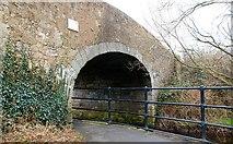 J0731 : Steenson's Bridge, Newry Canal (2) by Albert Bridge
