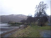 NN6557 : Loch Rannoch shoreline by Nick Mutton