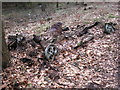 ST4193 : Remains of car in Wentwood Forest by Gareth James