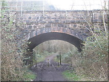 ST5673 : Railway Arch at the foot of Nightingale Valley, Leigh Woods by Dr Duncan Pepper