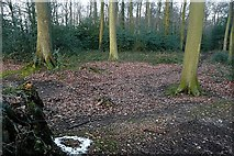 SU6678 : Entrance to Gutteridge's Wood by Graham Horn