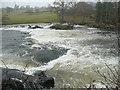 NY5637 : Submerged weir, River Eden, Little Salkeld by Humphrey Bolton