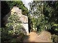NZ0878 : Quarry Garden, Belsay Hall by Oliver Dixon