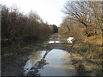TQ5113 : Fly tipping on restricted byway by Dave Spicer