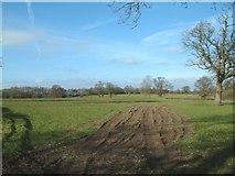 SJ6836 : Farmland off Moss Lane by Simon Huguet