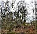 SJ8895 : Brookfield Unitarian Church by Gerald England