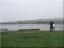SY2591 : Birdwatching from Coronation Corner by John M