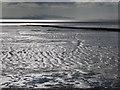 ST2981 : St. Brides Wentlooge: mudflats by Chris Downer
