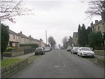 SE1734 : Beech Grove - Pollard Lane by Betty Longbottom