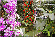 TQ1877 : Princess of Wales Conservatory, Kew Gardens, Surrey by Christine Matthews