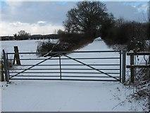 SY9898 : Snow at Bear Mead by John Palmer