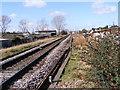 TM2141 : Along the tracks looking towards Warren Heath by Geographer