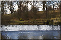 NU1913 : Weir on the Aln by Mark Evans