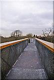 TQ1876 : The Xstrata Treetop Walkway and Rhizotron, Kew Gardens, Surrey by Christine Matthews