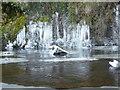 NZ0711 : River Greta SE of Brignall by Andy Waddington