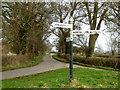 ST2734 : Rhode Lane, near Bridgwater by Ken Grainger