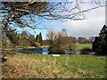 NY9172 : Pond near Haughton Castle by Brian Norman